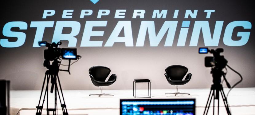 Streamingprojekt Peppermint Streaming